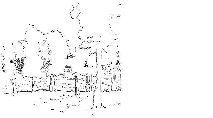 Sketch - Image 01